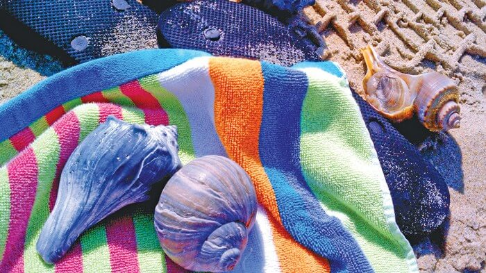 Towel-Whelks