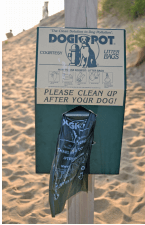 OBX VACATION FUN GUIDE - Photo of dog waste pick-up bags