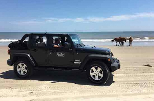 Outer Banks Jeep see wild horses