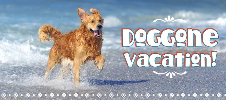 Doggone Vacation
