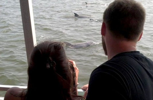 outer banks cruises - couple watching dolphins